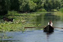 Danube Delta 1 Day Tour