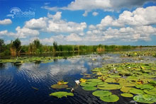 2 Days Danube Delta Tour